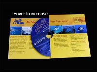 Salt Air DVD Mailer